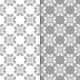 Белые и серые флористические предпосылки делает по образцу безшовный комплект Стоковая Фотография