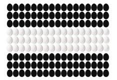 Белые и черные яичка на белой предпосылке, положенной в линию Текстура с космосом для текста изолировано Стоковая Фотография RF