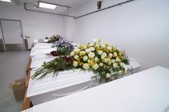 Белые комоды в рядке стоковая фотография