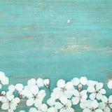 Белые лепестки вишни на старом деревянном столе Стоковое Изображение