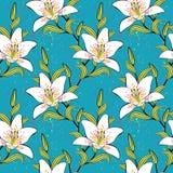 Белые лилии, романтичные, картина лета Стоковые Изображения