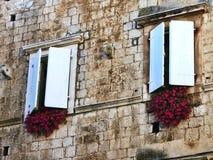 Белые окна с цветками в Хорватии стоковое изображение
