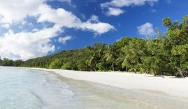 Белые песок пляжа коралла и Индийский океан просини. Стоковое Изображение RF