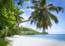 Белые песок пляжа коралла и Индийский океан просини. Стоковые Изображения RF