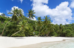 Белые песок пляжа коралла и Индийский океан просини. Стоковое Фото