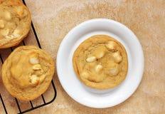 Белые печенья гайки шоколада и макадамии Стоковое Изображение