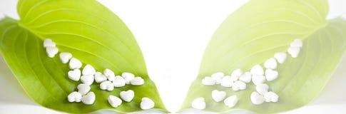 Белые пилюльки в форме сердца Стоковые Изображения RF