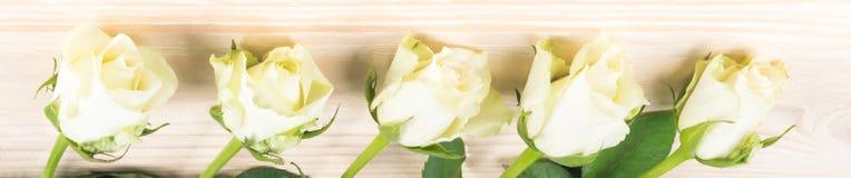 Белые розы лежат в линии против деревянной предпосылки стоковые изображения rf