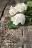Белые розы на деревянной таблице Стоковое Изображение RF