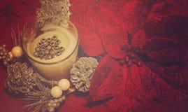 Белые свеча и цветки рождества Стоковое Фото