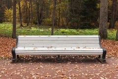 Белые стойки деревянной скамьи в парке осени Стоковая Фотография RF