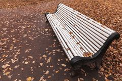 Белые стойки деревянной скамьи в парке осени Стоковое Фото