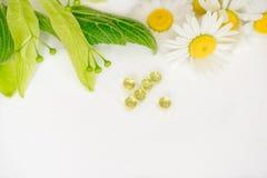 Белые таблетки в klubke kraft, лекарственные растения зеленых лист, гомеопатическая медицина Лист цветут и приносить липы, flo ст Стоковые Фотографии RF