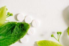 Белые таблетки в klubke kraft, лекарственные растения зеленых лист, гомеопатическая медицина Лист цветут и приносить липы, flo ст Стоковая Фотография