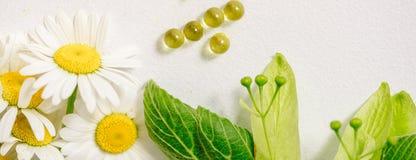 Белые таблетки в klubke kraft, лекарственные растения зеленых лист, гомеопатическая медицина Лист цветут и приносить липы, flo ст Стоковая Фотография RF
