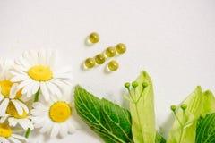 Белые таблетки в klubke kraft, лекарственные растения зеленых лист, гомеопатическая медицина Лист цветут и приносить липы, flo ст Стоковые Изображения RF