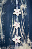 Белые цветки fondant на розовой тесемке Стоковое Изображение
