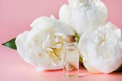 Белые цветок и бутылка с маслом или суть пиона на белизне конец вверх Стоковое Изображение