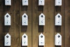 Белые часы птицы на деревянной стене Стоковое фото RF
