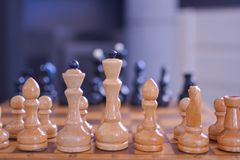 Белые шахматные фигуры на переднем плане стоковые изображения rf