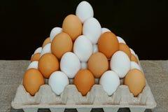 Белые яичка и коричневые яичка стоковые изображения rf