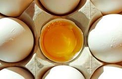 Белые яичка раковины, яичко, еда Стоковые Фото