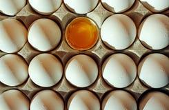 Белые яичка раковины, яичко, еда Стоковое Изображение
