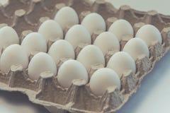 Белые яичка цыпленка, селективное яичко стоковые фотографии rf