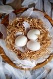Белые яйца в декоративном гнезде на деревянной плите Настроение пасхи концепции пасхи стоковое фото