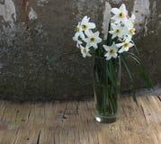 Белые daffodils на серой абстрактной предпосылке Стоковые Фотографии RF