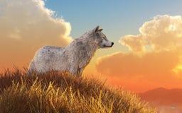 белый волк иллюстрация вектора
