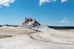Белый гейзер купола стоковое фото