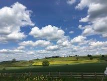 Белый, голубой, желтый, зеленый и бесконечные возможности стоковое фото rf