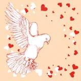 Белый голубь летает Птица на предпосылке цвета, сердцах для романтичного дизайна Чертеж руки в стиле эскиза вектор Стоковые Изображения
