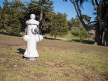 Белый жидкостный огнетушитель в парке Стоковое фото RF