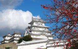 Белый замок Himeji на листьях солнечного света и переднего плана красных на дереве с предпосылкой голубого неба Стоковое Изображение