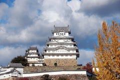 Белый замок Himeji на солнечном свете и апельсине переднего плана желтом выходит на дерево Стоковая Фотография