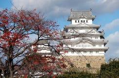 Белый замок Himeji на солнечном свете и красном цвете переднего плана желтом выходит на дерево Стоковая Фотография RF