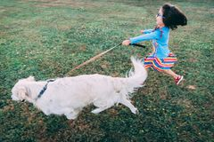 Белый золотой Retriever бежать с поводком пока счастливая маленькая девочка пробует держать дальше к ей стоковое фото rf