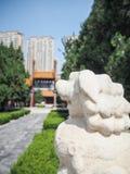 Белый каменный лев защищая вход к виску Конфуция стоковое фото rf