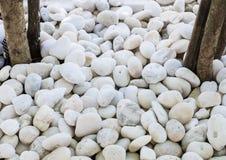 Белый камень камешка на домашнем саде Стоковые Изображения RF