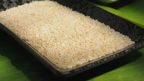 Белый конец экстра семени сезама поднимающий вверх и сигналит внутри фото макроса Стоковая Фотография RF
