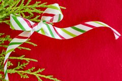 Белый, красный цвет и зеленый цвет striped смычок праздника с ветвью сосны на красном цвете Стоковые Изображения RF