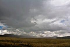Белый ландшафт ресервирования апаша гор, Аризона, Соединенные Штаты Стоковые Изображения RF