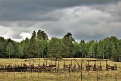Белый ландшафт ресервирования апаша гор, Аризона, Соединенные Штаты Стоковое фото RF