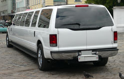 Белый лимузин венчания Стоковые Фотографии RF
