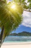 Белый песок пляжа коралла и azure индийский океан. Стоковое Изображение