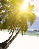 Белый песок пляжа коралла и azure индийский океан. Стоковое фото RF