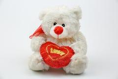 Белый плюшевый медвежонок держа красное сердце при ВЛЮБЛЕННОСТЬ текста, изолированная на белой предпосылке Стоковое фото RF
