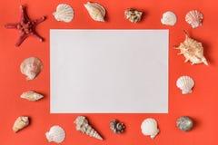 Белый прямоугольник с рамкой от seashells r на положении предпосылки плоском r стоковое изображение